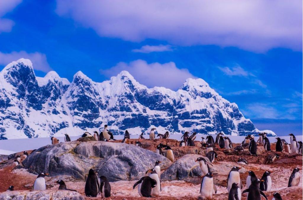 Antártida (crédito Instagram @cohnjared)